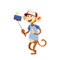 Funny picture monkey photographer mamal person take selfie stick in his hand and cute animal taking a selfie together Royalty Free Stock Photo
