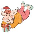 Funny piggy the symbol of the New year