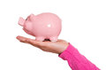 Funny pink pig on a hand Stock Photography