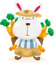 Funny rabbit with carrot Royalty Free Stock Image