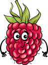 Funny Raspberry Fruit Cartoon ...