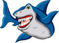 Funny shark cartoon Royalty Free Stock Photos
