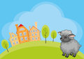 Funny sheep background