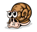 Funny snail Stock Photography