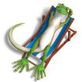 Funny toon gecko Royalty Free Stock Photo