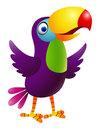 Funny toucan bird cartoon Stock Photo