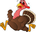Funny turkey running Stock Image