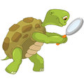 Funny Turtle. Finding. Royalty Free Stock Photo