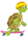 Funny Turtle. Skateboarding. Stock Photo