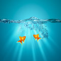 Funny underwater backgrounds Stock Image