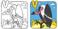 Funny vulture coloring book. Alphabet V