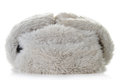 Fur hat isolated on white background Royalty Free Stock Images