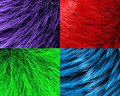 Fur textures Royalty Free Stock Photo