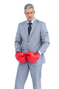 Furious businessman posing with boxing gloves on white background Stock Photography