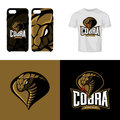 Furious cobra head sport club isolated vector logo concept
