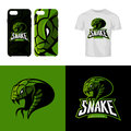 Furious snake sport club isolated vector logo concept.