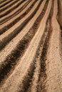 Furrows Stock Photos
