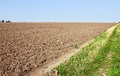 Furrows near the field edge Royalty Free Stock Photo