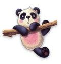 Furry panda
