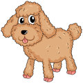 A furry pet illustration of on white background Royalty Free Stock Photo