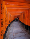 Fushimi Inari Photo stock