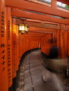 Fushimi Inari Photos stock