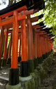 Fushimi Inari Royalty Free Stock Images