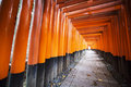 Fushimi inari shrine in kyoto for adv or others purpose use Royalty Free Stock Photos