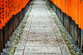 Fushimi inari shrine at kyoto japan photo taken on february th Stock Image