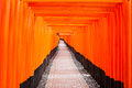 Fushimi inari shrine kyoto japan in thousands of torii gates straddle a network of trails a walking path leads through a tunnel of Stock Photo