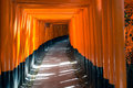 Fushimi inari shrine in kyoto torii gates at japan Stock Photo