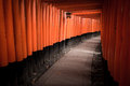 Fushimi inari shrine thousands of red torii gates line the path at in kyoto japan Stock Photography