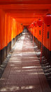 Fushimi inari taisha toriis kyoto japan Stock Photos