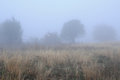 Fuzzy landscape in the fall image of foggy rural bulgaria Stock Photos
