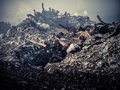 Gabage dump thilafushi island maldives garbage burning trash Stock Photography