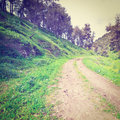 Galilee dirt road in the forest of instagram effect Royalty Free Stock Photography