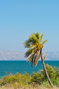 Galilee sea view from mountains to kinneret Stock Photos