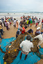 Galle sri lanka october fishermen are coming back from fishing nets too big local people helping to get nets and fishes Royalty Free Stock Image