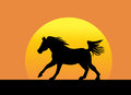 Galloping horse silhouette against setting sun Royalty Free Stock Photography