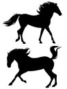 Galloping stallions vector Stock Photo