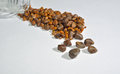 Gallstones  from single operation. Royalty Free Stock Photo
