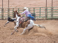Gallup indian rodeo new mexico august cowboy participates in in a calf roping competition at the nd annual in nm on august Royalty Free Stock Photo
