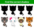 Game for children: find the correct shadow (white cat, grey cat,brown and black act, brown cat) Royalty Free Stock Photo