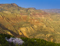 Gansu moutain spring Royalty Free Stock Images