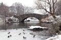 Gapstow bridge - Central Park Stock Photo