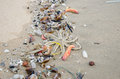 Garbage on a beach, environmental pollution Royalty Free Stock Photo