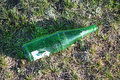 Garbage beer bottles in the grass Stock Photography