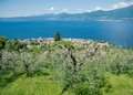 Garda lake view on italy Stock Images