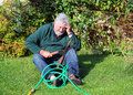 Garden accident falling over man injured a senior has tripped a hose pipe and fallen to the ground he is and holding his head Stock Image