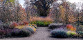 Garden in Autumn colours Royalty Free Stock Photo